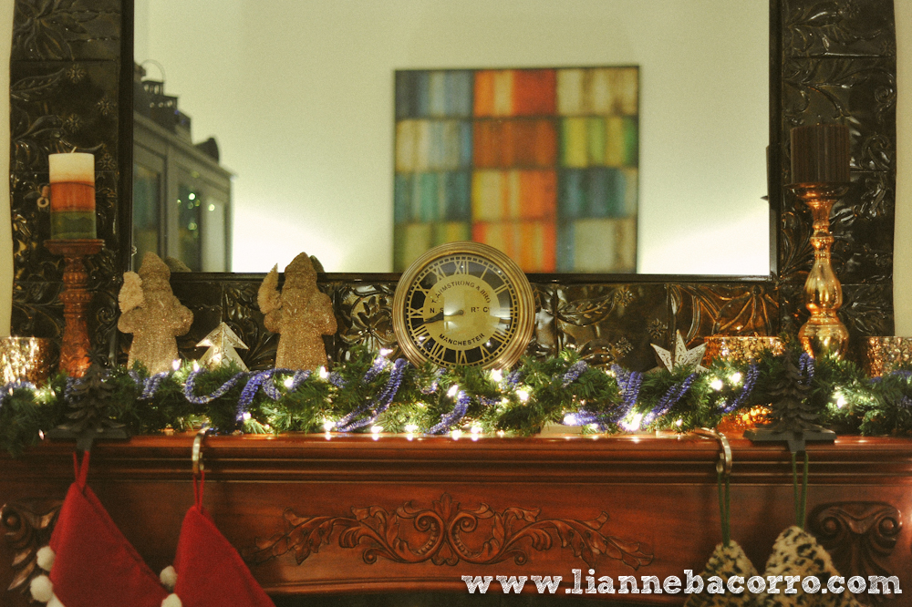 2013 Christmas in Maryland - Lianne Bacoro Photography-10