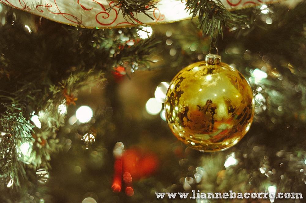 2013 Christmas in Maryland - Lianne Bacoro Photography-14