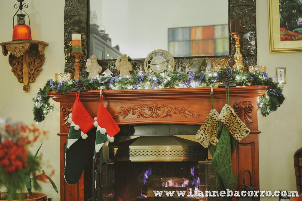 2013 Christmas in Maryland - Lianne Bacoro Photography-17
