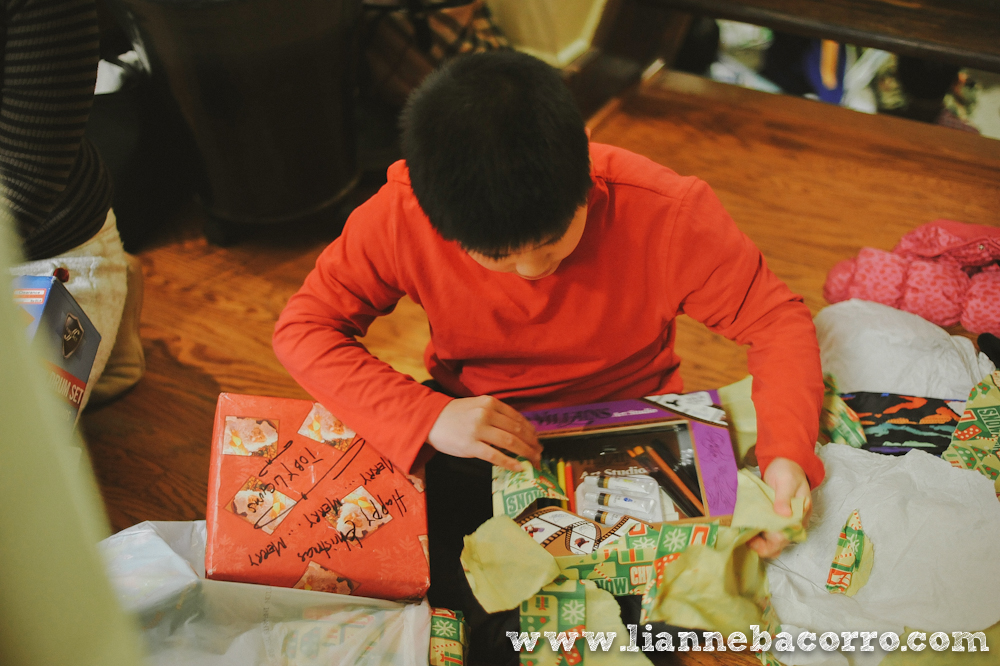 2013 Christmas in Maryland - Lianne Bacoro Photography-19