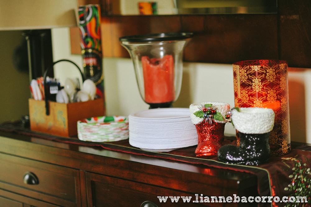 2013 Christmas in Maryland - Lianne Bacoro Photography