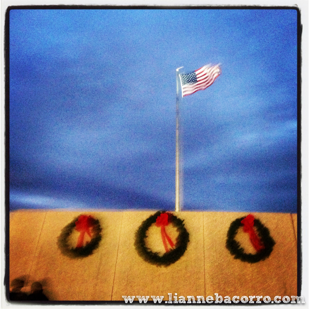2013 Christmas in Maryland - Lianne Bacorro Photography-3-2