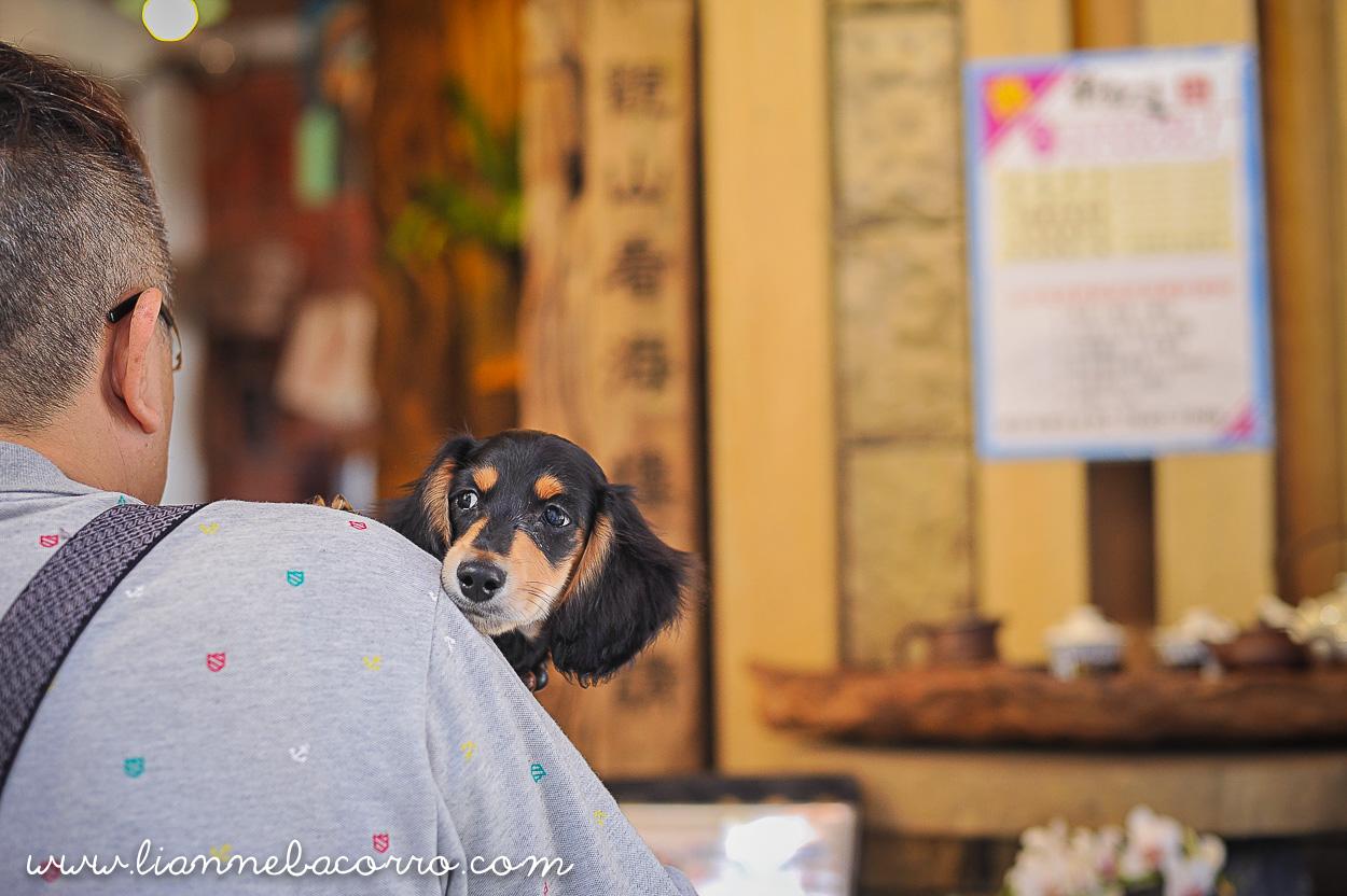 2015 Jiufen Old Street Taipei Taiwan Travel Photography - Lianne Bacorro-54